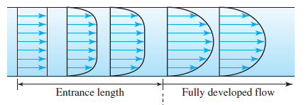 fully-developed-flow